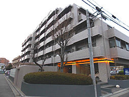 埼玉県さいたま市桜区南元宿2丁目の賃貸マンションの外観