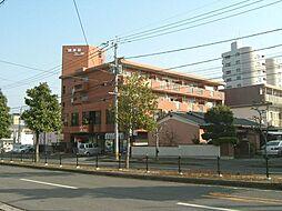 南須賀コーポ[401号室]の外観