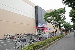 コートピュア 司 A[1階]の外観