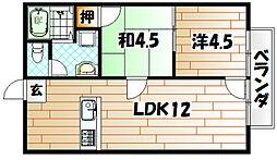 プチメゾン高須[203号室]の間取り