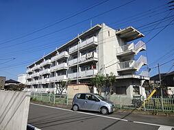 クラウンズマンション天川大島[302号室]の外観