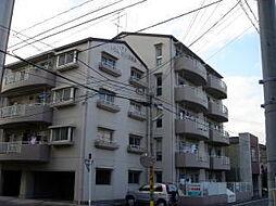 ドエル昭和[1階]の外観