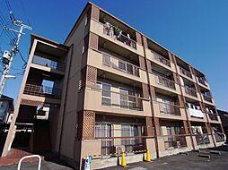 グリーンハイツ阪本[401号室]の外観