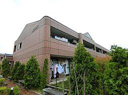 埼玉県川口市大字安行吉蔵の賃貸マンションの外観