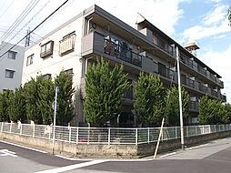 埼玉県川口市八幡木1丁目の賃貸マンションの外観