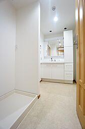 洗面所入り口からの構図です。洗濯パンがあり、タオル等の収納スペースもございます