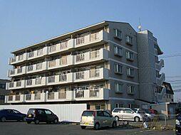 愛知県西尾市熊味町北十五夜の賃貸マンションの外観