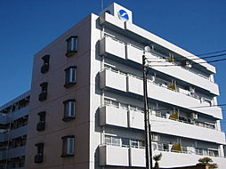 メゾンブランシュ1号館[5階]の外観