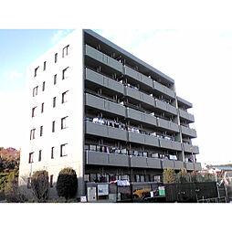 神奈川県横浜市旭区本村町の賃貸マンションの外観