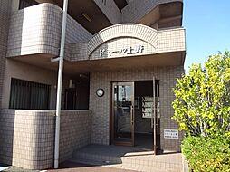 ドミール上野[4階]の外観