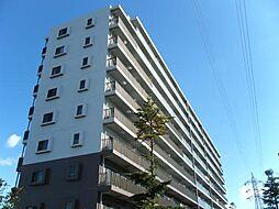 トロワボヌール本町[7階]の外観