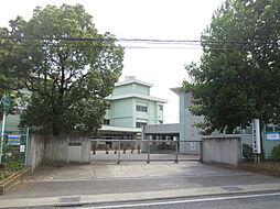 [一戸建] 神奈川県厚木市妻田北2丁目 の賃貸【/】の外観