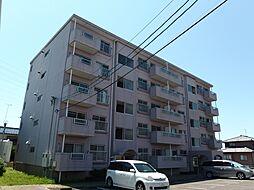 愛知県岡崎市宇頭町字山ノ神の賃貸マンションの外観
