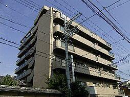 ヴィラトーヨー[5階]の外観