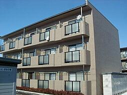 長野県松本市大字芳川小屋の賃貸マンションの外観