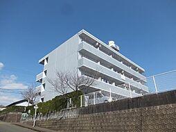 サンライズカワサキA[406号室]の外観