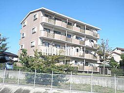 ガーデンハイツ[4階]の外観