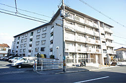長岡京シティハイツ[206号室]の外観