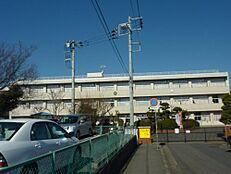 小学校水戸市立梅が丘小学校まで1430m
