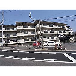 奈良県北葛城郡広陵町疋相の賃貸マンションの外観