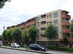 東京都杉並区宮前2丁目の賃貸マンションの外観