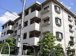 T・メゾンシャルマントIII[4階]の外観