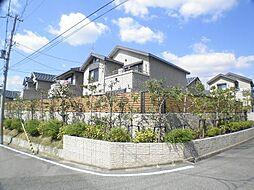 [テラスハウス] 兵庫県芦屋市岩園町 の賃貸【/】の外観