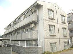 シティパレス東生駒P-3 A[1階]の外観