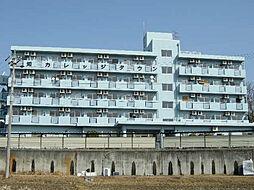 愛知カレッジタウンA棟[1309号室]の外観