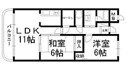 ファムール忍ヶ丘[0203号室]の間取り