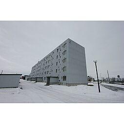 ビレッジハウス江別2号棟[407号室]の外観
