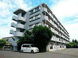埼玉県東松山市幸町の賃貸マンションの外観