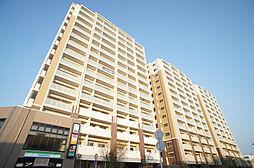 RJRプレシア新宮中央駅前[14階]の外観