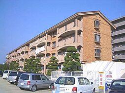 徳島県徳島市万代町5丁目の賃貸マンションの外観