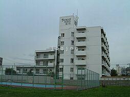 西線9条旭山公園通駅 4.8万円