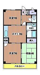 レグルス[4階]の間取り