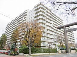 シーアイマンション円山西棟[7階]の外観