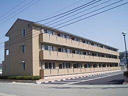 リビングタウン東金沢 B[113号室]の外観