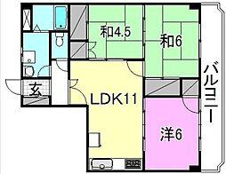 愛媛県松山市昭和町の賃貸マンションの間取り
