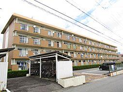 愛知県半田市清城町2丁目の賃貸マンションの外観