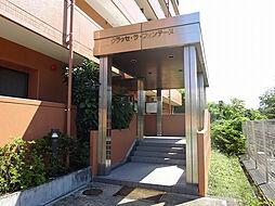 仙台市泉区七北田字大沢大ケ沢