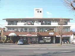 メゾン小松[305号室]の外観