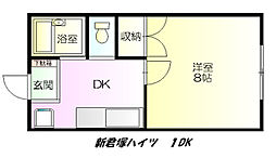 新君塚ハイツ[105号室]の間取り