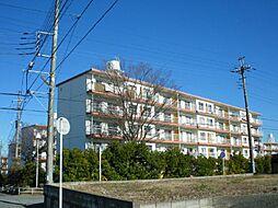 高山台ハイツ7号棟[301号室]の外観