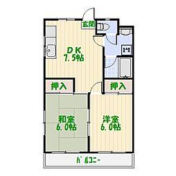 東京都葛飾区青戸7丁目の賃貸マンションの間取り