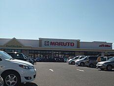 マルト東金沢店(330m)