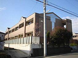 静岡県沼津市東沢田の賃貸アパートの外観
