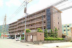 キャッスル川久保[5階]の外観
