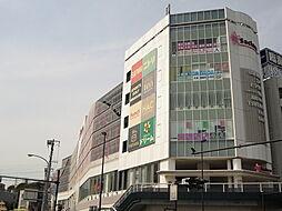 [一戸建] 神奈川県横浜市戸塚区上矢部町 の賃貸【/】の外観