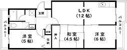 滋賀県近江八幡市鷹飼町東2丁目の賃貸マンションの間取り